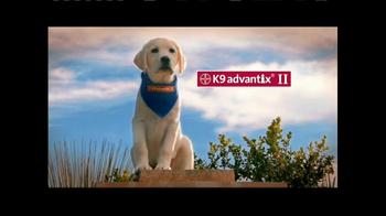 K9 Advantix II TV Spot, 'Tick Nuisance'