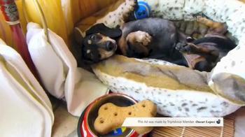 Pet Friendly by TripAdvisor Member Oscar Lopez thumbnail