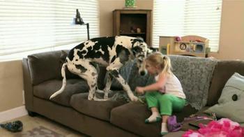 Iams TV Spot, 'Duke: Princess Dog' - Thumbnail 8