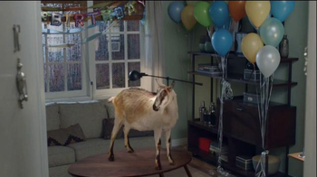 Discover Card: Goat Surprise