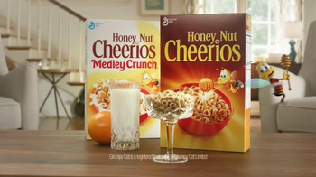 Honey Nut Cheerios TV Spot, 'Buzz Meets Grumpy Cat'  - Thumbnail 10
