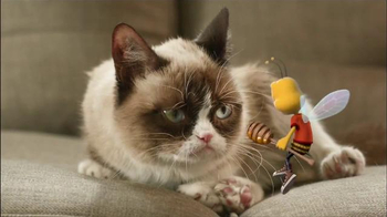 Honey Nut Cheerios TV Spot, 'Buzz Meets Grumpy Cat'  - Thumbnail 2