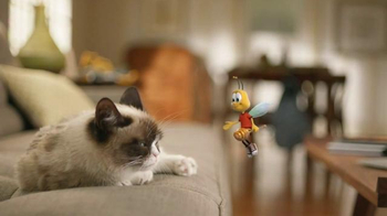 Honey Nut Cheerios TV Spot, 'Buzz Meets Grumpy Cat'  - Thumbnail 6