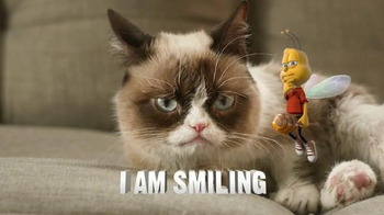Honey Nut Cheerios TV Spot, 'Buzz Meets Grumpy Cat'  - Thumbnail 8