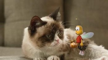 Honey Nut Cheerios TV Spot, 'Buzz Meets Grumpy Cat'  - Thumbnail 9