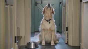 PetSmart TV Spot, 'Low Price Food Brands'