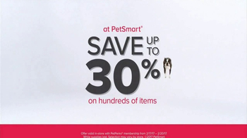 PetSmart Stock Up & Save TV Spot, 'Toys and Treats' Song by Queen
