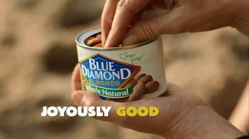 Blue Diamond Almonds TV Spot, 'Beach'