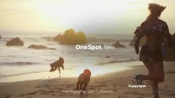 PuppySpot TV Spot, 'One Spot Families Trust to Find a New Puppy'