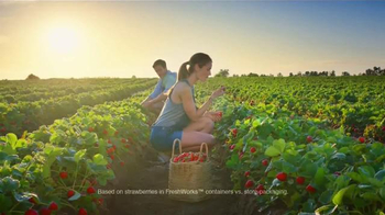 Rubbermaid FreshWorks Produce Saver TV Spot, 'Just Picked' - Thumbnail 3