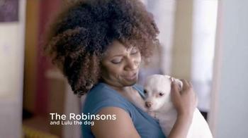 Keeping Your Home Dog Hair-Free thumbnail