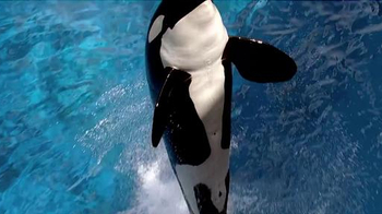 SeaWorld TV Spot, 'The New Future of SeaWorld'