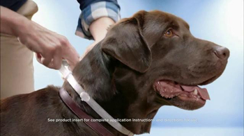 Seresto Large Dog TV Spot, 'Non-Greasy Collar'