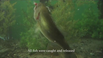 Twitching Lure TV Spot, 'Too Many Fish' - Thumbnail 3