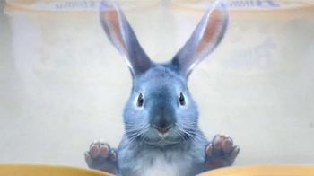 Blue Bunny Ice Cream TV Spot, 'Freezer Aisle' Song by Frankie Valli