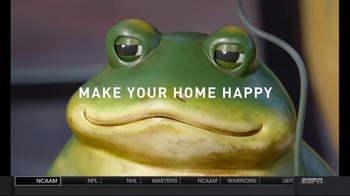 how to make a frog home
