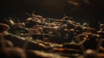 Terminix TV Spot, 'Nature's Wonders'