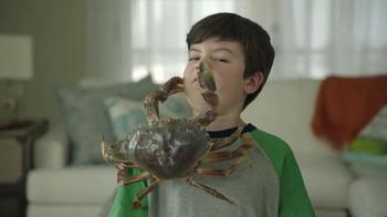 Joe's Crab Shack Texas Steampot TV Spot, 'Crabs: For Pots Not Pets'