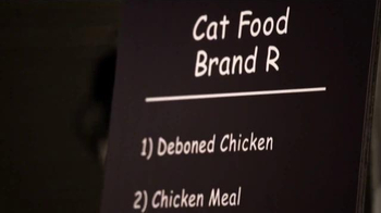 Blue Wilderness Vs Rachael Ray Cat Food