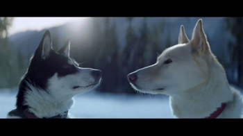 2017 FIAT 500X Crossover TV Spot, \'Dogsled\' Song by The Stooges