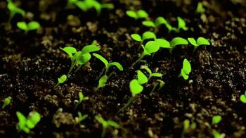 Casper TV Spot, 'Can't Sleep: Sprouts'