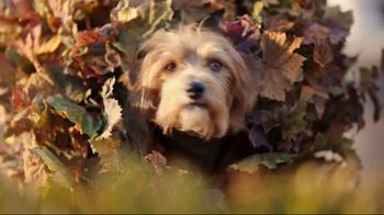 Heartgard Plus TV Spot, 'No Way to Hide'