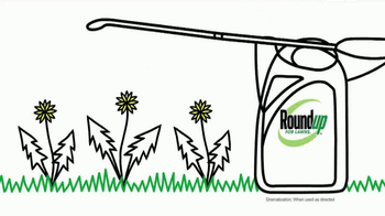 Roundup for Lawns TV Spot, 'Kill Lawn Weeds' - Thumbnail 6