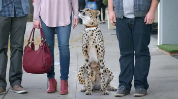 Nat Geo WILD: Cheetah Friend thumbnail