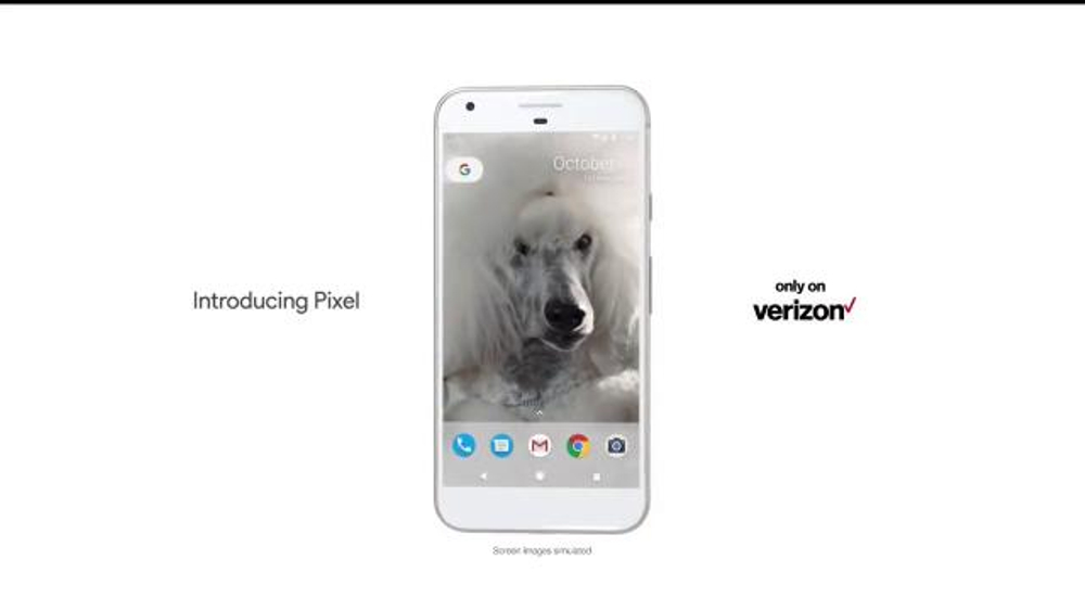 Google Pixel Tv Commercial Poodle Song By Lou Reed