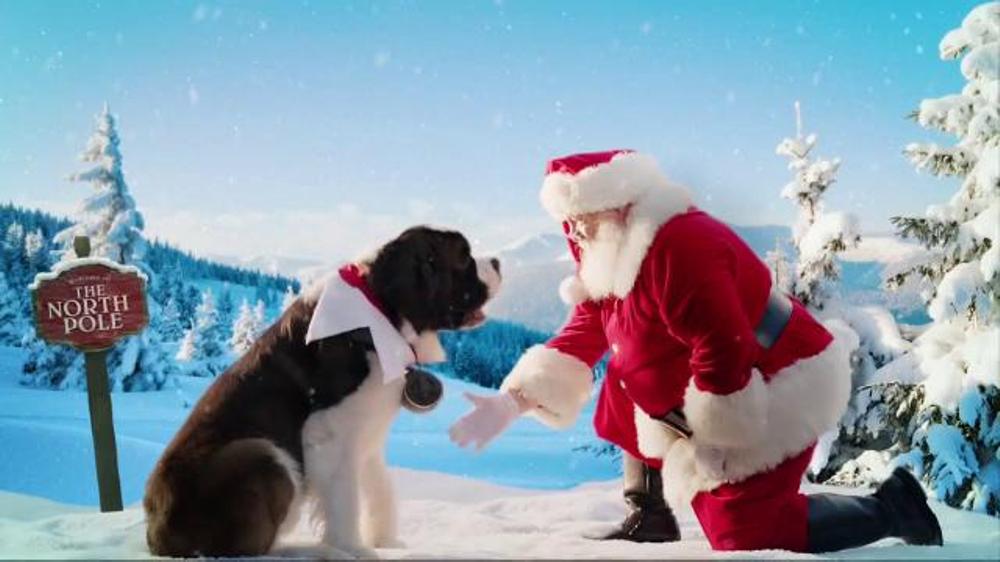 Elf Pets A Saint Bernard Tradition Tv Commercial Acts