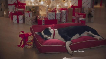 PetSmart TV Spot, 'Holiday Dreams' Song by Queen