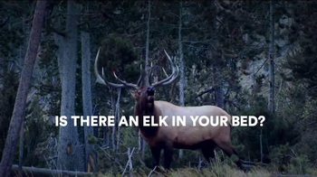 Sleep Number TV Spot, 'Is There an Elk in Your Room?'