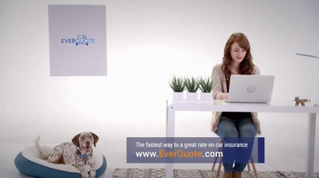 EverQuote TV Spot, 'The Perfect Dog Match' - Thumbnail 4
