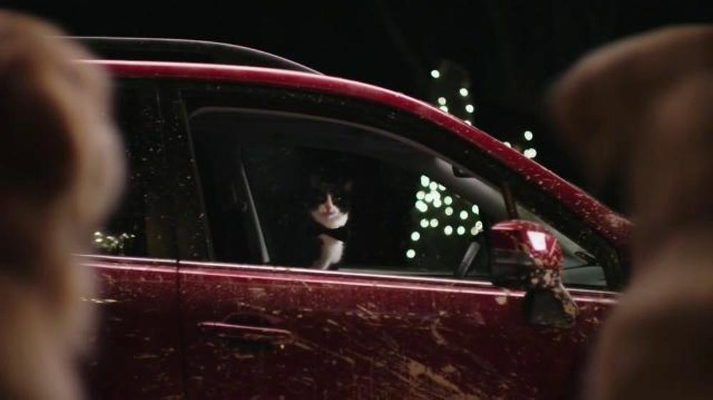 Subaru Dog Commercial Cat Valet