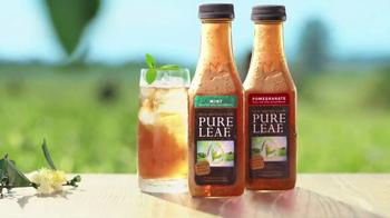 Pure Leaf Tea TV Spot, 'Mint and Pomegranate'