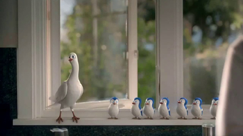 Birds Eye TV Spot, 'Bird Choir'