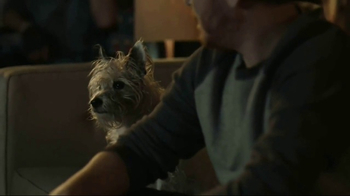 State Farm TV Spot, 'Following' Song by Joy Williams - Thumbnail 6