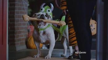 Trick-or-Treat Dog thumbnail