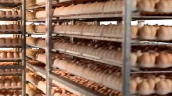 Sanderson Farms TV Spot, 'Employees'