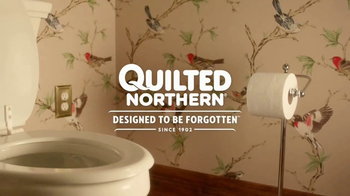 I dont usually laugh out loud at advertising The best an ad can get from me might be a smile or maybe a chuckle But Quilted Northern toilet paper made me laugh out loud with their new series of