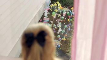 Easter Surprise: Jelly Bean Garden thumbnail