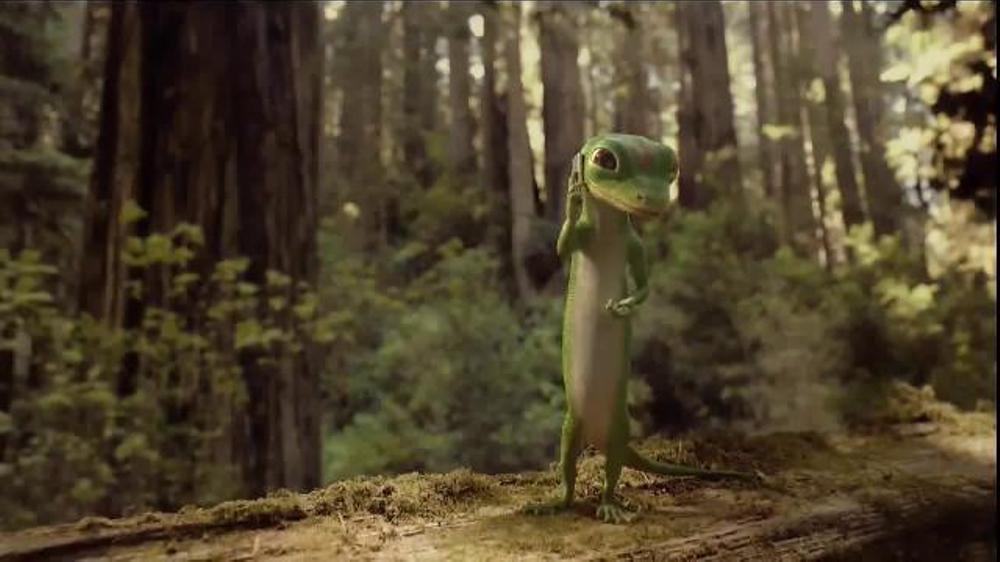 GEICO Emergency Roadside Service TV Commercial, 'Tree' - iSpot.tv