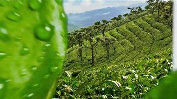 Honest Tea TV Spot, 'Honest World'