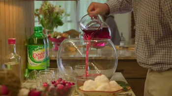 Canada Dry Gingerale TV Spot, \'Food Network: Cranberry Punch\'