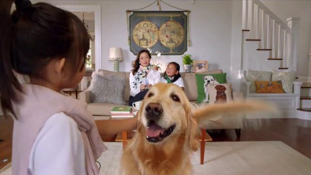 PETCO Grooming TV Commercial, 'Happy' - iSpot.tv