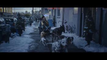 Alka-Seltzer Plus TV Spot, 'The Cold Truth: Dog Walker'