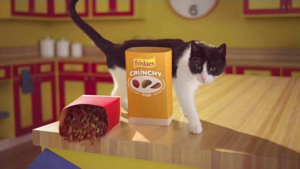 Cat Food Friskies Commercials
