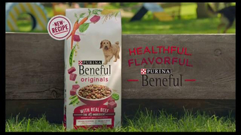 Purina Beneful Originals TV Spot, 'Becky and Einstein' - Thumbnail 7