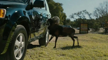 Farmers Insurance TV Spot, \'Hall of Claims: Billy Goat Ruffians\'