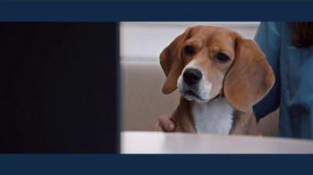 IBM TV Spot, 'Victoria Stilwell & IBM Watson' - Thumbnail 8